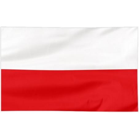 Flaga Turyngii 300x150cm