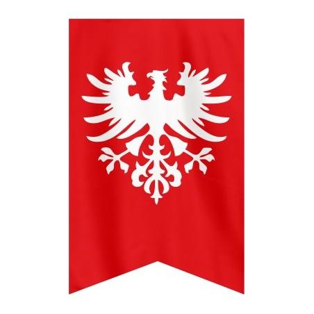 Flaga Powstania Wielkopolskiego 120x75cm