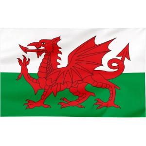 Flaga Walii 300x150cm